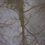 gino monaco fotografie
